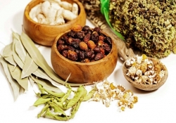 Medicina Ecológica e As Leis da Natureza